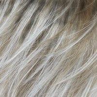 Blond kleur 14/101R